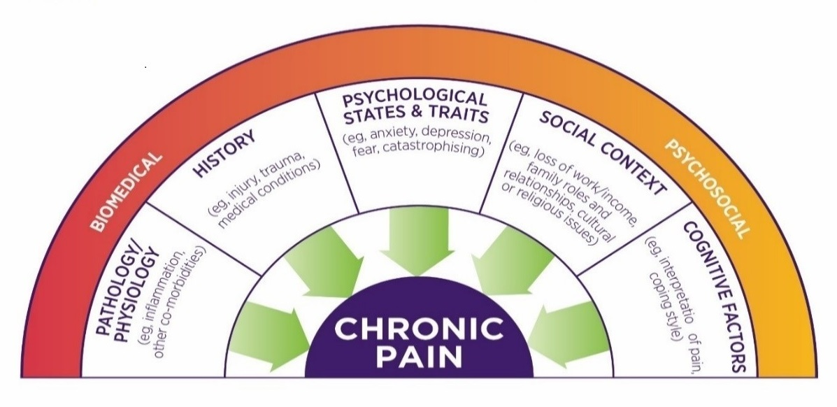 Diagram showing factors contributing to experience of pain